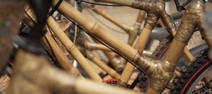 Gana'nın Bambu Bisikletleri
